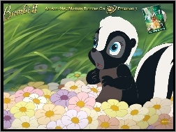 skunks, Bambi 2